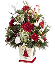 christmas flowers Amery WI