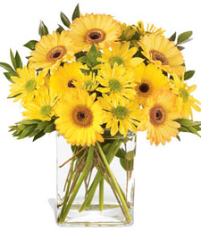get well flowers Tillamook OR